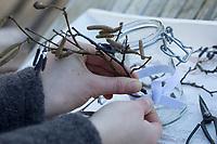 Windlicht, Windlichter, Waldlicht, Waldlichter, Wind-Licht, Wind-Lichter, ein Glas wird von außen mit Stöckchen, Ästchen, Ästen dekoriert. Im Glas steht und brennt windgeschützt eine Kerze, Bastelei mit Naturmaterialien. Schritt 1: ein Gummiband wird um das Glas gespannt und Zweige hinter das Gummiband gesteckt