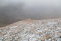 Snow showers on Mt. Belford's northwest flank