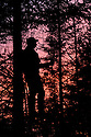 00105-044.07 Bowhunting (DIGITAL) Silhouetted archer in tree stand.  Hunt, archery, evergreen, dawn, dusk, deer.  V7R1