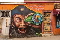 South America, Chile, SValparaiso, Cerro Alegre,street art