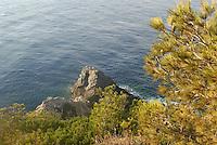 - southern France, Porquerolles island, Calancque de l'Indienne....- Francia del sud, isola di Porquerolles, Calancque de l'Indienne