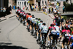 Bora-Hansgrohe and Team Sunweb lead the peloton during Stage 5 of the 2019 Tour de France running 175.5km from Saint-Die-des-Vosges to Colmar, France. 10th July 2019.<br /> Picture: ASO/Pauline Ballet | Cyclefile<br /> All photos usage must carry mandatory copyright credit (© Cyclefile | ASO/Pauline Ballet)