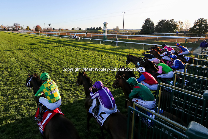 November 7, 2020 : Horses break out of the starting gate during the Longines Turf on Breeders' Cup Championship Saturday at Keeneland Race Course in Lexington, Kentucky on November 7, 2020. Matt Wooley/Breeders' Cup/Eclipse Sportswire/CSM
