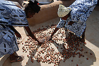 BURKINA FASO Dorf Sesuala bei Pó , Ethnie Kassena ,Frauen Kooperative verarbeiten Karite bzw Shea Nuesse zu Shea Butter - BURKINA FASO , village Sesuala near Pó , ethnic Kassena , women cooperative produce shea butter from shea nuts of Karite tree