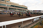 Away from the gate in the 57th running of the Donn Handicap (G1) at Gulfstream Park.  Hallandale Beach Florida. 02-09-2013