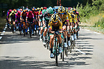 The peloton led by Team Jumbo-Visma during Stage 2 of Criterium du Dauphine 2020, running 135km from Vienne to Col de Porte, France. 13th August 2020.<br /> Picture: ASO/Alex Broadway   Cyclefile<br /> All photos usage must carry mandatory copyright credit (© Cyclefile   ASO/Alex Broadway)