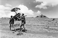Ethiopia. West Gujam. Danbecha district. Anjeni is a small village. Two men walk on a dirt track to the medical clinic while some cows are in the fields. They carry on their shoulders a sick woman, seated on a chair fixed on two wood sticks. The woman protects herself from the sun with an umbrella. © 1996 Didier Ruef