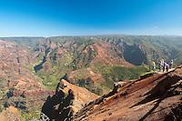 Scenic view of Waimea Canyon, Kauai, Hawaii