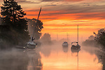 Misty sunrise on the River Frome, in Wareham, Dorset by Steve Hogan