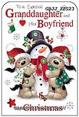 Jonny, CHRISTMAS ANIMALS, WEIHNACHTEN TIERE, NAVIDAD ANIMALES, paintings+++++,GBJJXFS23,#xa#