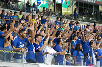 BELO HORIZONTE, MG, 23.01.2019: CRUZEIRO-PATROCINENSE - Torcida durante partida entre Cruzeiro e Patrocinense, válida pela 2a rodada do campeonato mineiro 2019,  no Estadio Mineirão em Belo Horizonte, MG, na noite desta quarta feira (23) (foto Giazi Cavalcante/Codigo19)