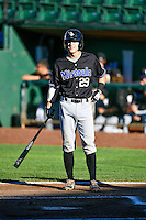 Ryan January (29) of the Missoula Osprey at bat against the Ogden Raptors in Pioneer League action at Lindquist Field on July 13, 2016 in Ogden, Utah. Ogden defeated Missoula 8-2. (Stephen Smith/Four Seam Images)
