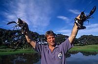 Océanie/Australie/Australie Méridionale/Ile Kangaroo/Kingscote : Jimmy Turner éleveur d'écrevisses Gum Creek Marron