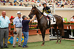DEL MAR,CA-AUGUST 15: Vexatious ,ridden by Rafael Bejarano,  after winning the CTT and TOC Stakes at Del Mar Race Track on August 15,2018 in Del Mar,California (Photo by Kaz Ishida/Eclipse Sportswire/Getty Images)