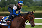 JUNE 5, 2015: American Pharoah, trained by Bob Baffert,  exercises in preparation for the 147th running of the Belmont Stakes at Belmont Park in New York, NY. Jon Durr/ESW/CSM
