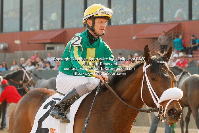 #2 Taris (KY) with jockey Clinton L. Potts aboard after the running of the Honeybee Stakes (Grade III) at Oaklawn Park in Hot Springs, Arkansas-USA on March 8, 2014. (Credit Image: © Justin Manning/Eclipse/ZUMAPRESS.com)