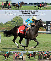Sweeter Still winning The Light Hearted Stakes at Delaware Park on 8/7/10