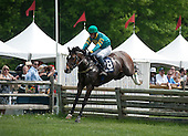 3rd Radnor Hunt Cup Stakes - Wildcatter (by DQ)