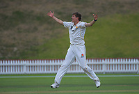 Ben Sears appeals during day two of the Plunket Shield cricket match between the Wellington Firebirds and Central Districts at Basin Reserve in Wellington, New Zealand on Monday, 2 March 2020. Photo: Dave Lintott / lintottphoto.co.nz