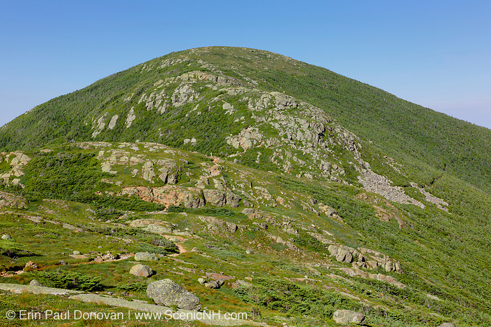 Mount Eisenhower from along the Crawford Path (Appalachian Trail) in Sargent's Purchase in the New Hampshire White Mountains during the summer months; this area is part of the Southern Presidential Range. Named after President Dwight D. Eisenhower, Mount Eisenhower is straight ahead. This mountain was once called Mount Pleasant, but was renamed Mount Eisenhower after President Eisenhower died.