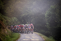 grupetto up the misty & very steep section (+16%) of the Mur de Péguère (Cat1/1375m/9.3km/7.9%)<br /> <br /> Stage 15: Limoux to Foix (185km)<br /> 106th Tour de France 2019 (2.UWT)<br /> <br /> ©kramon