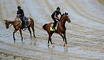 September 2, 2020: Authentic exercises and Assistant Trainer Jimmy Barnes watches as horses prepare for the 2020 Kentucky Derby and Kentucky Oaks at Churchill Downs in Louisville, Kentucky. The race is being run without fans due to the coronavirus pandemic that has gripped the world and nation for much of the year. Scott Serio/Eclipse Sportswire/CSM