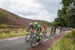 Theo Bos, Belkin-Pro Cycling Team, Arnhem Veenendaal Classic , UCI 1.1, Posbank, Rheden, The Netherlands, 22 August 2014, Photo by Thomas van Bracht / Peloton Photos