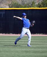 Josh Burgmann - Chicago Cubs 2020 spring training (Bill Mitchell)