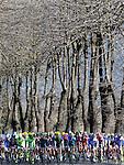 Stage 2 Camaiore-Cascina