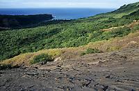Sulphur Bay village and the Pacific Ocean viewed from the Yasur Volcano slopes, Ipekel Ipeukel, Tanna Island, Vanuatu.