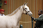 September 09, 2014: Hip #314 Tapit - Sweet Mariage filly consigned by Taylor Made Sales, sold for $700,000 to GDS Racing Stable at the Keeneland September Yearling Sale.   Candice Chavez/ESW/CSM