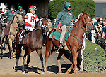 """LEXINGTON, KY - OCTOBER 09: #13 Hembree and jockey Joel Rosario in the 26th running of the Dixiana Bourbon (Grade 3) $250,000 Breeders' Cup """"Win And You're In Juvenile Turf Division"""" at Keeneland Race Course in Lexington, KY.  October 9, 2016, Lexington, Kentucky. (Photo by Candice Chavez/Eclipse Sportswire/Getty Images)"""