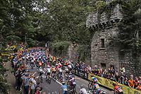 peloton up the Keizersberg<br /> <br /> Men Elite – Road Race (WC)<br /> Race from Antwerp to Leuven (268.3km)<br /> <br /> ©kramon