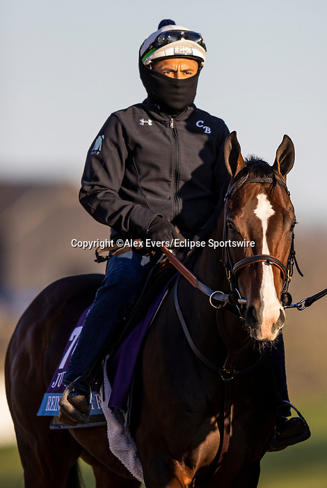 November 3, 2020: Reinvestment Risk, trained by trainer Chad C. Brown, exercises in preparation for the Breeders' Cup Juvenile at Keeneland Racetrack in Lexington, Kentucky on November 3, 2020. Alex Evers/Eclipse Sportswire/Breeders Cup