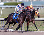 HALLANDALE BEACH, FL - December 16: Lewis Bay #3 wins $100,000 in The Rampart (G3) for trainer Chad C. Brown with jockey Irad Ortiz, Jr. in the irons at Gulfstream Park on December 16, 2017 in Hallandale Beach, FL. (Photo by Bob Aaron/Eclipse Sportswire/Getty Images)