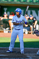 Luis Paz (15) of the Ogden Raptors at bat against the Missoula Osprey in Pioneer League action at Lindquist Field on July 13, 2016 in Ogden, Utah. Ogden defeated Missoula 8-2. (Stephen Smith/Four Seam Images)