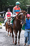 Brujo de Ollerros with Julien Leparoux up in the 54th running of the Grade 2 Bowling Green Handicap for 3-year olds going 1 1/4 mile on the turf.