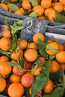Europe/France/06/Alpes-Maritimes/Menton: Mandarines  de Menton