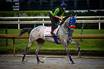 September 2, 2020: Dream Marie exercises as horses prepare for the 2020 Kentucky Derby and Kentucky Oaks at Churchill Downs in Louisville, Kentucky. The race is being run without fans due to the coronavirus pandemic that has gripped the world and nation for much of the year. Evers/Eclipse Sportswire/CSM