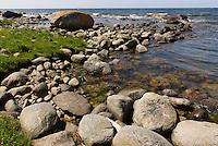 Findlinge an der Küste von Helligpeder auf der Insel Bornholm, Dänemark, Europa<br /> boalders at the coast of Helligpeder, Isle of Bornholm Denmark