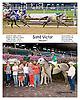 Sand Victor winning at Delaware Park on 8/30/14