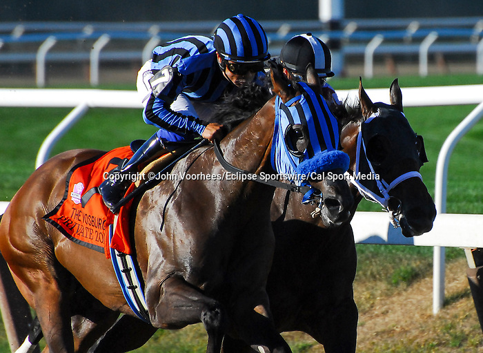 September 27, 2014: Private Zone (7,black and blue cap), ridden by Martin Pedroza, wins the Vosburgh Stakes on Jockey Club Gold Cup Day at Belmont Park Race Track in Elmont, New York. John Voorhees/ESW/CSM