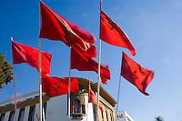 Afrique/Afrique du Nord/Maroc/Rabat: Drapeaux du Maroc sur l'avenue Mohammed V