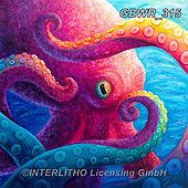 Simon, REALISTIC ANIMALS, REALISTISCHE TIERE, ANIMALES REALISTICOS, innovativ, paintings+++++RachelFroud_Octopus,GBWR315,#a#, EVERYDAY