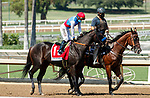 ARCADIA, CA  SEP 26: #1 Princess Noor, ridden by Victor Espinoza, in the post parade of the Chandelier Stakes (Grade ll) on September 26, 2020 at Santa Anita Park in Arcadia, CA. . (Photo by Casey Phillips/Eclipse Sportswire/CSM.