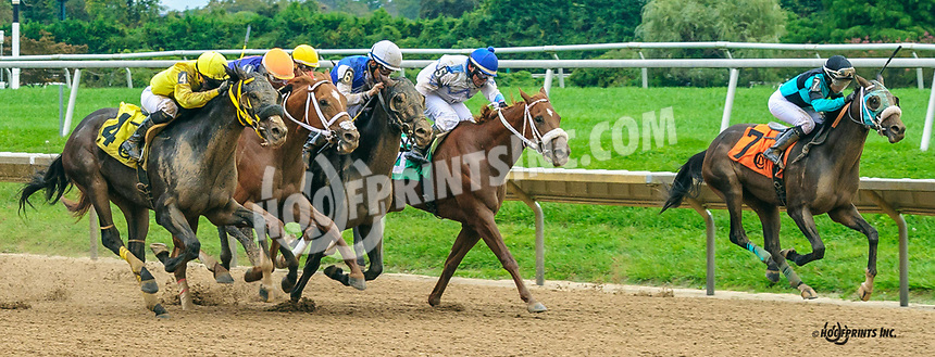 Twitty City winning at Delaware Park on 10/6/21