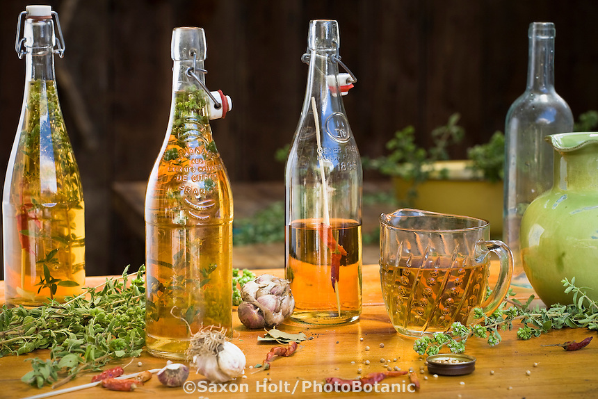 making herb vinegar with oregano, garlic, and peppers