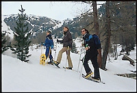 PEJO_n6 Val di Pejo in inverno, immagini dei villaggi,delle montagne, delle baite, delle piste di sci e attività sportive,<br /> Pejo in winter, images of the villages, mountains, mountain huts, the ski slopes and sporting activities,<br /> Pejo im Winter, Bilder der Dörfer, Berge, Berghütten, den Skipisten und sportlichen Aktivitäten,<br /> Pejo en hiver, les images des villages, des montagnes, des cabanes de montagne, les pistes de ski et des activités sportives,<br /> Pejo en invierno, las imágenes de los pueblos, montañas, refugios de montaña, las pistas de esquí y actividades deportivas,<br /> Pejo fi fasl alshshata'a, sur min alquraa waljibal wal'akwakh aljabaliat, wamunhadarat alttazalluj wal'anshitat alrriadia,<br /> Pejo的冬天,鄉村,山區,山木屋,滑雪場和體育活動的圖像,<br /> 冬のペヨ、村、山、山の小屋、スキー場やスポーツ活動のイメージ,<br /> Pejo in de winter, beelden van de dorpen, bergen, berghutten, de skipistes en sportieve activiteiten,<br /> Pejo w zimie, obrazy wsi, gór, schronisk górskich, stoków narciarskich i uprawiania sportu,<br /> Pejo no inverno, as imagens das aldeias, montanhas, abrigos de montanha, pistas de esqui e actividades desportivas,<br /> Pejo télen, a képek a falvak, hegyek, hegyi, a sípályák és sporttevékenységek