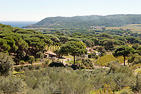 View of La Domaine les Bouis, Ramatuelle, near Saint Tropez, France, 16 October 2013. The farm belongs to the owner of Club 55, Patrice De Colmont, and all the vegetables, wine and olives produced organically and on principles of permaculture, supply Club 55's restaurant.
