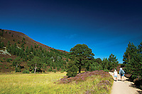 Rathad nam Meirleach, The Thieves Road, The Cateran's Trail, Glen More, Cairngorm National Park